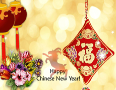 Elements of Chinese New Year